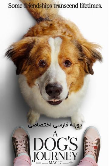 سفر یک سگ