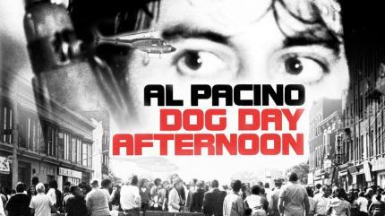 تریلر فیلم بعد از ظهر سگی