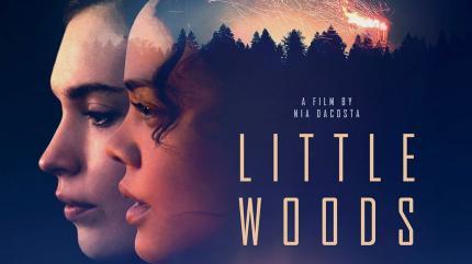تریلر فیلم جنگل کوچک