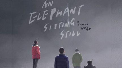 یک فیل هنوز نشسته است
