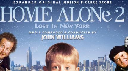 تنها در خانه 2: گمشده در نیویورک